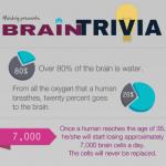 Brain Trivia Mindrig