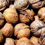 memory boosting nuts